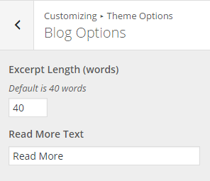 Blog Options