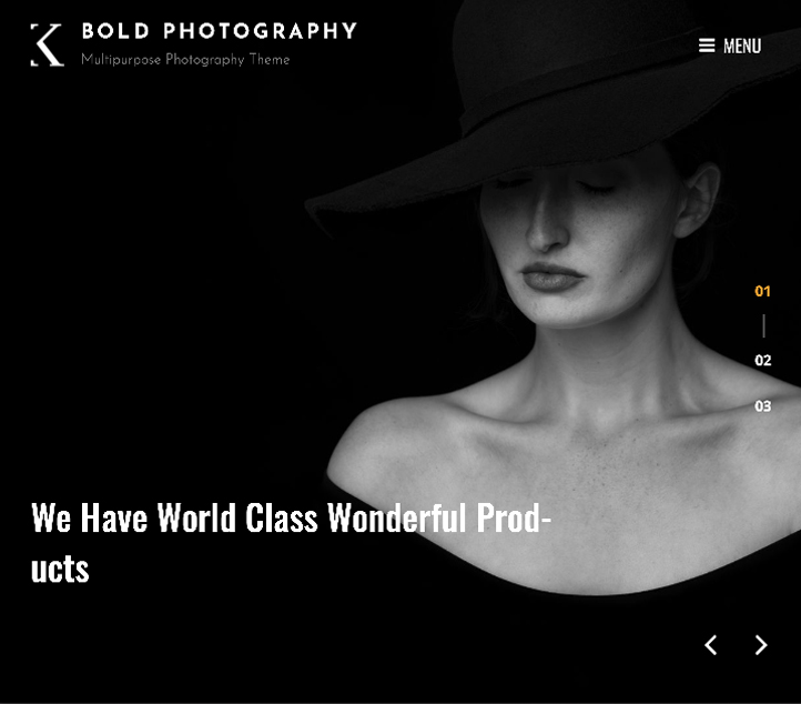 Bold Photography - Best Free Business WordPress Themes and Templates 2020