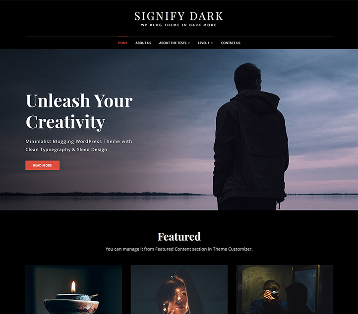 Signify Dark - Best Free Business WordPress Themes 2020