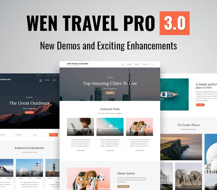 WEN Travel Pro 3.0